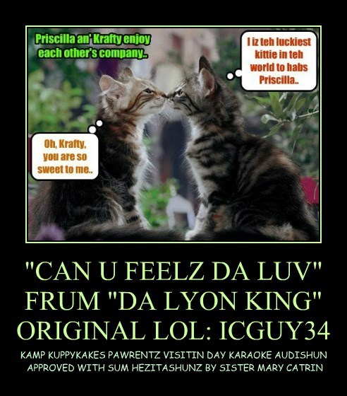 """CAN U FEELZ DA LUV"" FRUM ""DA LYON KING"" ORIGINAL LOL: ICGUY34"