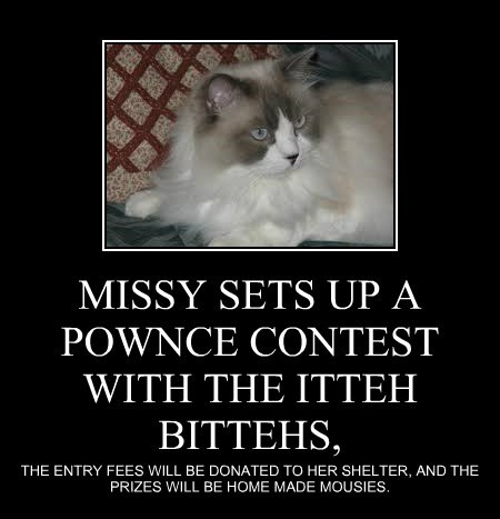 MISSY SETS UP A POWNCE CONTEST WITH THE ITTEH BITTEHS,