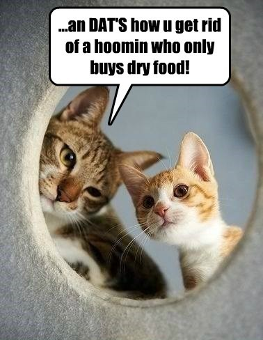 ...an DAT'S how u get rid of a hoomin who only buys dry food!