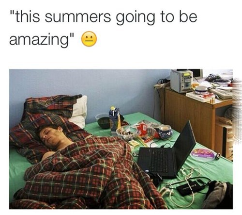 Every Summer, in a Nutshell