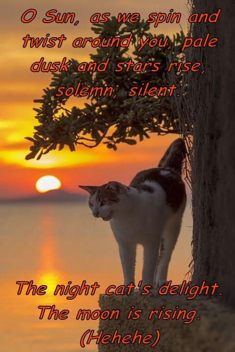 O Sun, as we spin and twist around you, pale dusk and stars rise, solemn, silent.     The night cat's delight. The moon is rising. (Hehehe)