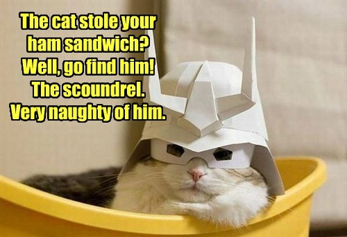 The cat stole your  ham sandwich?  Well, go find him! The scoundrel. Very naughty of him.