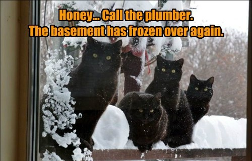 Honey... Call the plumber.  The basement has frozen over again.