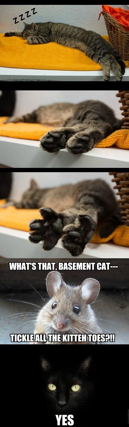 Little Cat Feet