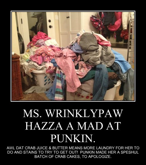 MS. WRINKLYPAW HAZZA A MAD AT PUNKIN.