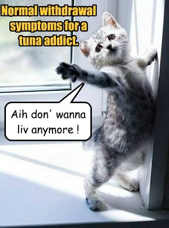 Normal withdrawal symptoms for a tuna addict.