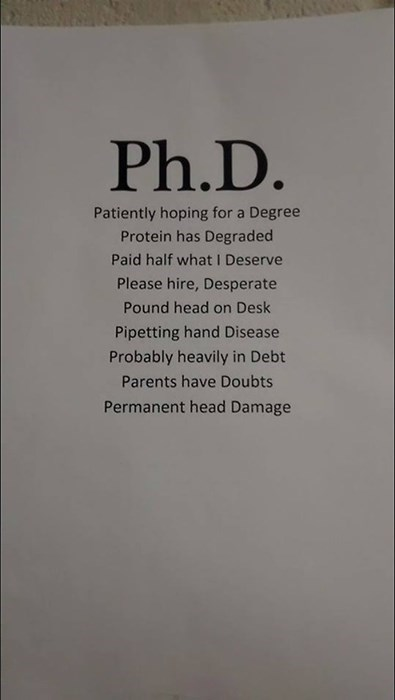 What Does Ph.D. Mean to You?