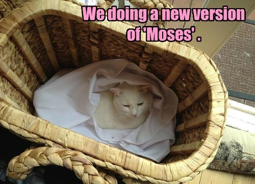 We doing a new version of 'Moses' .