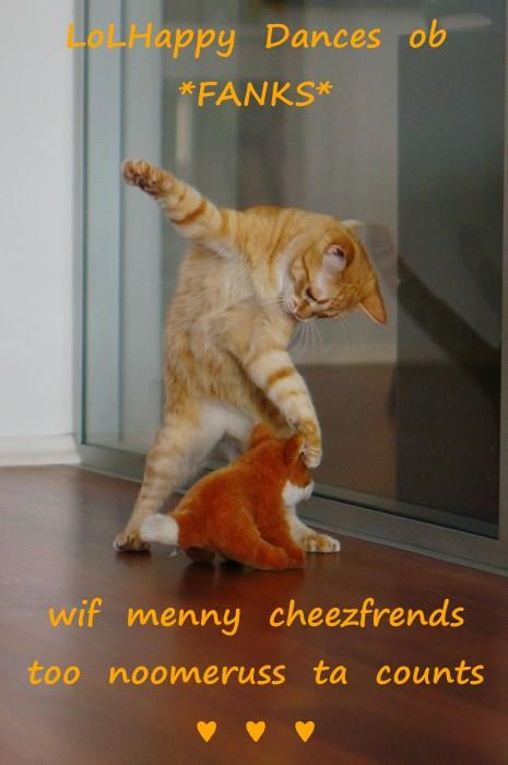 LoLHappy  Dances  ob  *FANKS*  wif  menny  cheezfrends  too  noomeruss  ta  counts  ♥  ♥  ♥