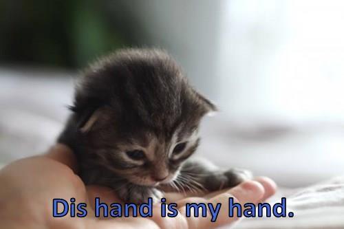 Dis hand is my hand.