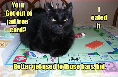 I Suggest You Let The Cat Win