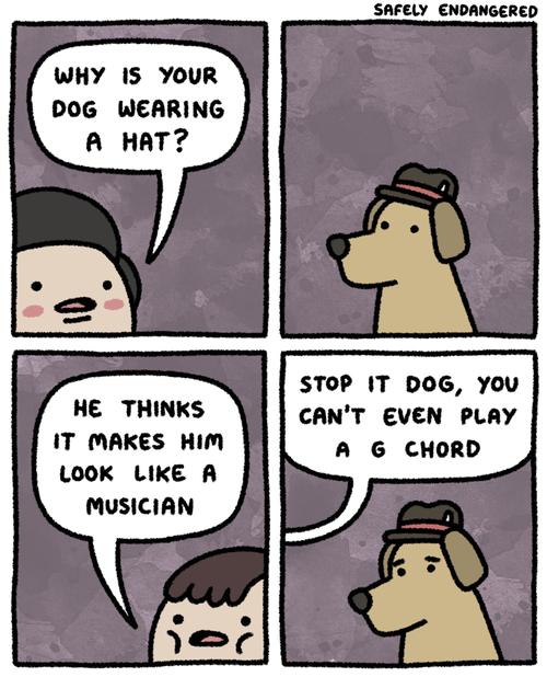 dogs,hats,Music,web comics