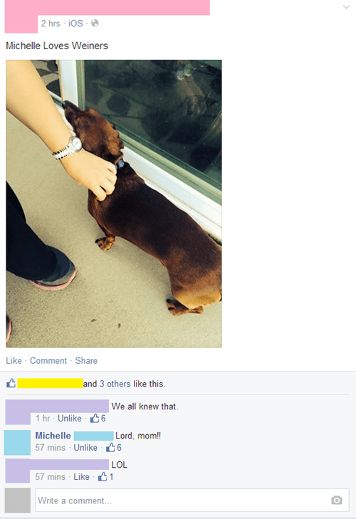 Such a Passion for Dachshunds
