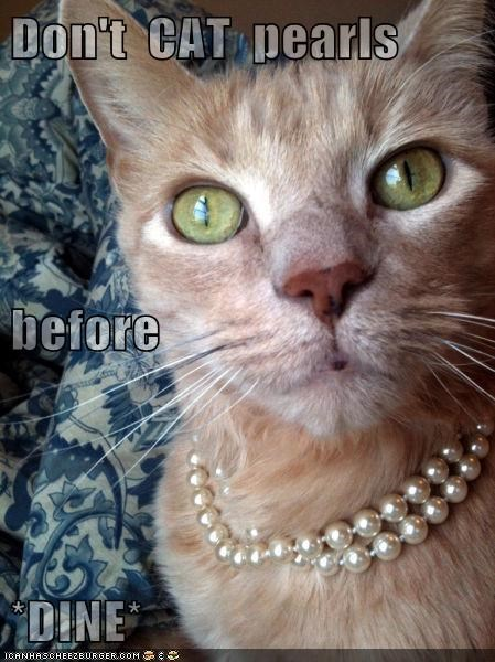 Don't  CAT  pearls before *DINE*