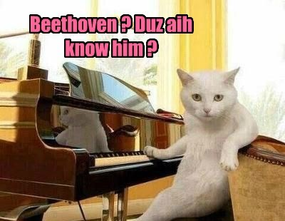 Beethoven ? Duz aih know him ?
