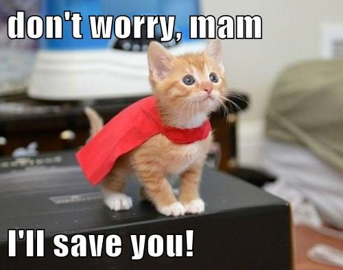 don't worry, mam  I'll save you!