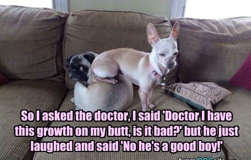 So I asked the doctor, I said 'Doctor I have  this growth on my butt, is it bad?' but he just laughed and said 'No he's a good boy!'