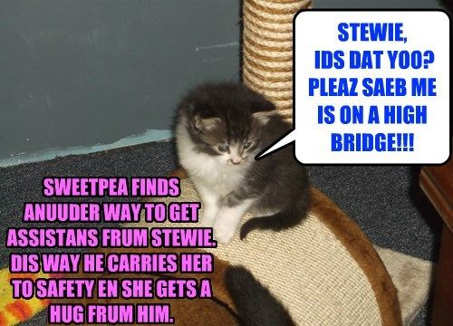 STEWIE,  IDS DAT YOO? PLEAZ SAEB ME IS ON A HIGH BRIDGE!!!