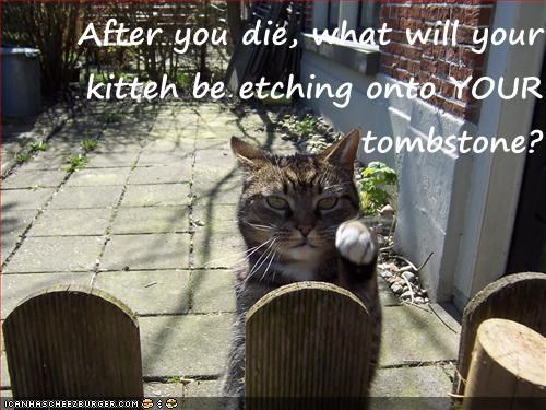 After you die, what will your kitteh be etching onto YOUR tombstone?