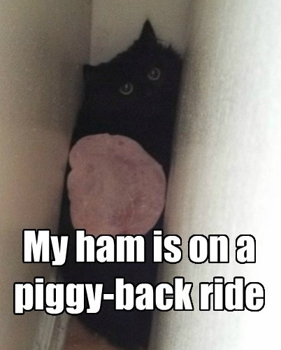 Piggy-back Riding Ham