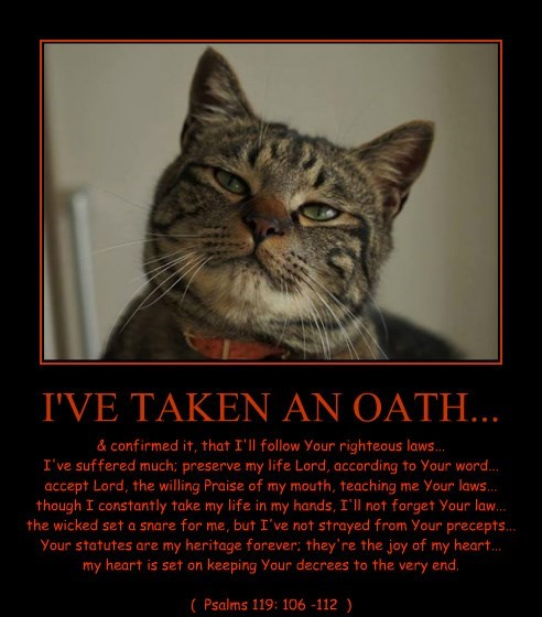I'VE TAKEN AN OATH...