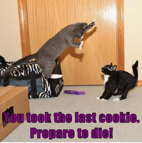 You took the last cookie.  Prepare to die!