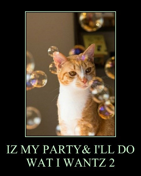 IZ MY PARTY& I'LL DO WAT I WANTZ 2