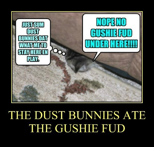 THE DUST BUNNIES ATE  THE GUSHIE FUD