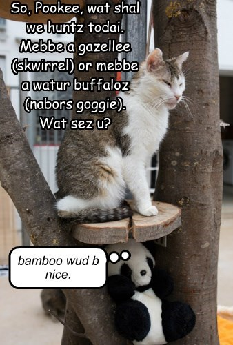 So, Pookee, wat shal we huntz todai.  Mebbe a gazellee (skwirrel) or mebbe a watur buffaloz (nabors goggie).  Wat sez u?