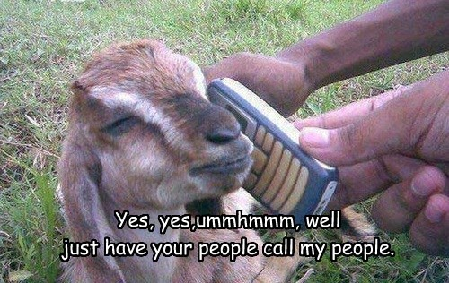 Yes, yes,ummhmmm, well just have your people call my people.