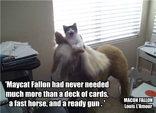 'Maycat Fallon had never needed much more than a deck of cards, a fast horse, and a ready gun . '