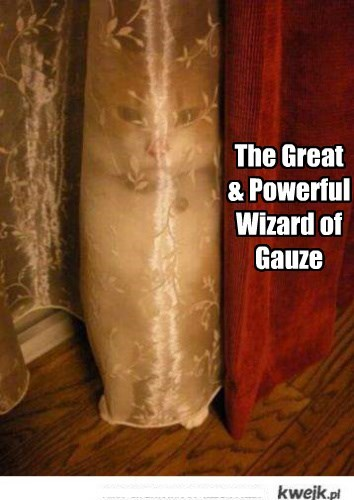 Pay No Attention To The Knucklehead Behind The Curtain