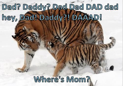 Dad? Daddy? Dad Dad DAD dad hey, Dad! Daddy?! DAAAD!   Where's Mom?
