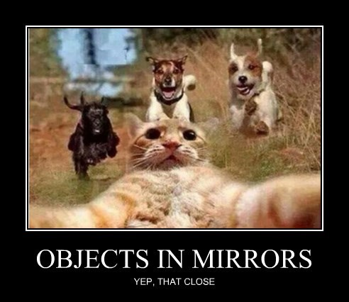 OBJECTS IN MIRRORS