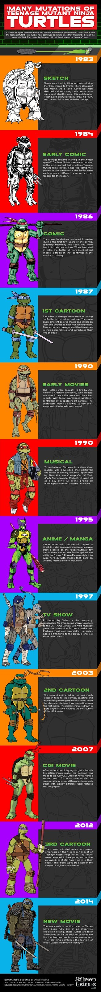 The History of Turtle Power