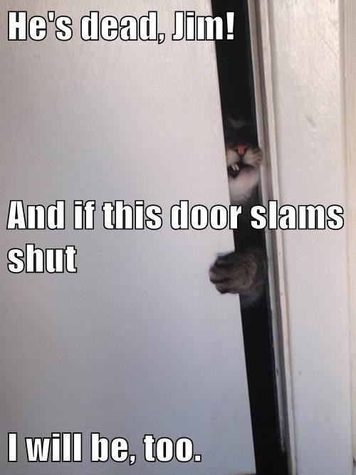 He's dead, Jim! And if this door slams shut I will be, too.