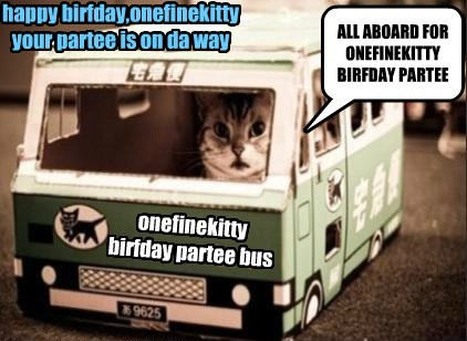 happy birfday, onefinekitty!