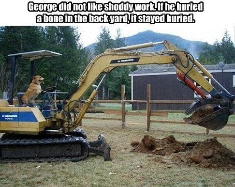 George did not like shoddy work. If he buried a bone in the back yard, it stayed buried.