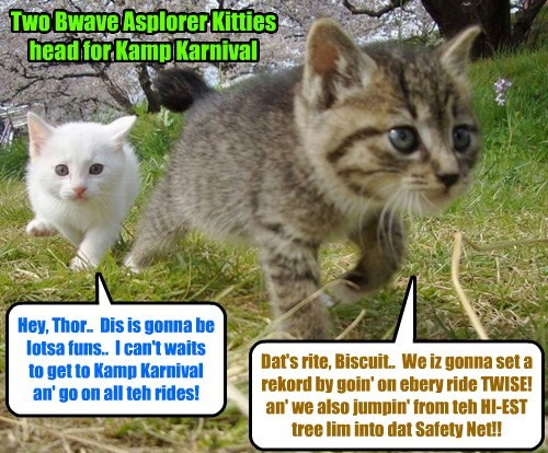 Such Bwave Kitties!! (Akshually, Biscuit iz most looking forward to teh Underwear Ride.. hehe)