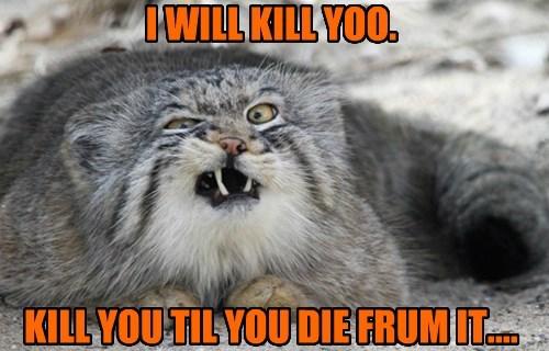 I WILL KILL YOO.