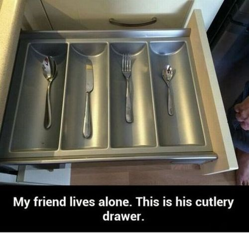 forever alone,funny,cutlery,g rated,dating