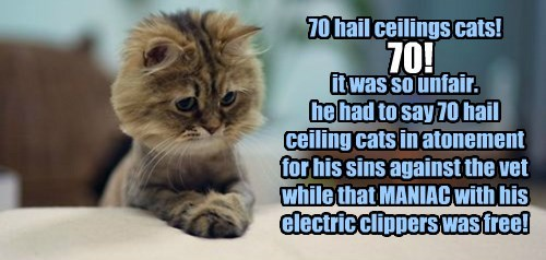 70 hail ceilings cats!   it was so unfair.  he had to say 70 hail ceiling cats in atonement for his sins against the vet while that MANIAC with his electric clippers was free!