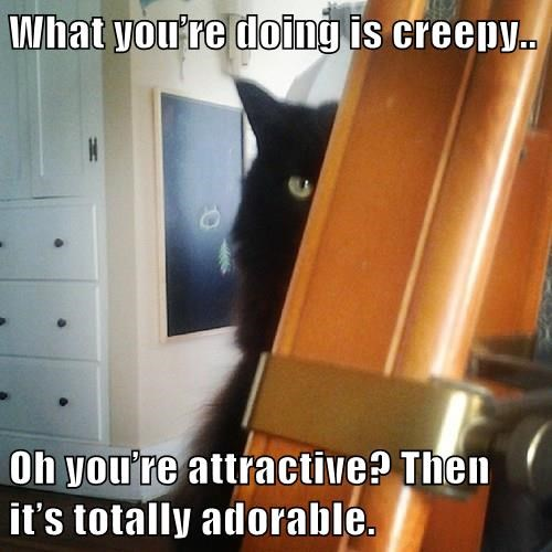What you're doing is creepy..  Oh you're attractive? Then it's totally adorable.