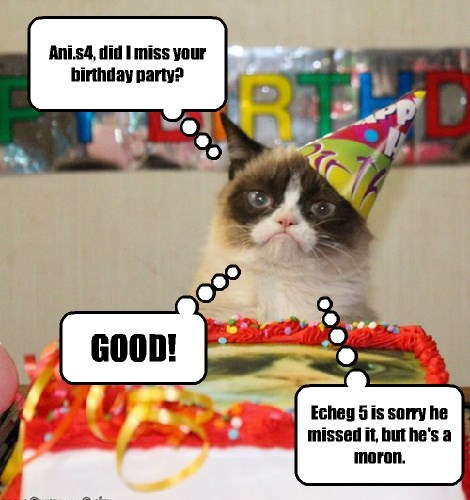 Grumpy Cat only came for a slice of Ani.s4's birthday cake.