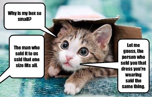 Hoomans are so gullible!