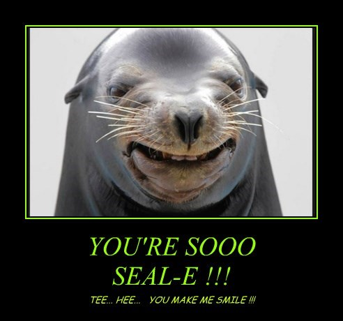 YOU'RE SOOO SEAL-E !!!