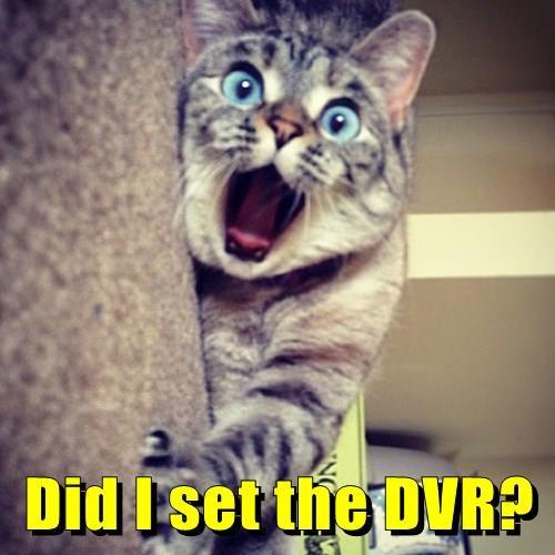 Did I set the DVR?