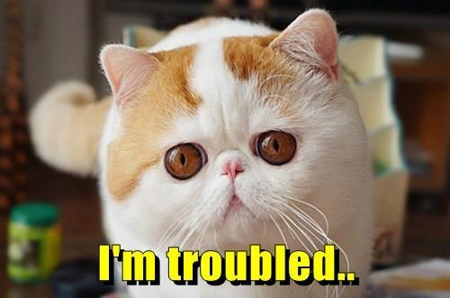 I'm troubled..