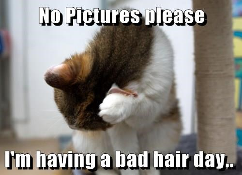 No Pictures please  I'm having a bad hair day..