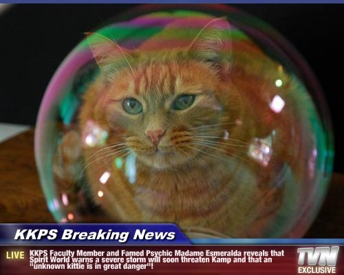 """KKPS Breaking News - KKPS Faculty Member and Famed Psychic Madame Esmeralda reveals that Spirit World warns a severe storm will soon threaten Kamp and that an """"unknown kittie is in great danger""""!"""
